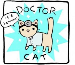 doctorcat