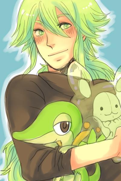n_and_a_few_pokemon_by_monospec-d3aln7b