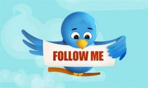 blog-Twitter-bird-500x300
