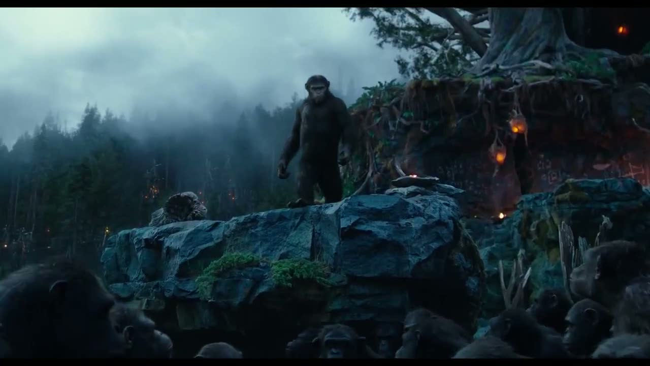 The ape village is quite impressive to look at