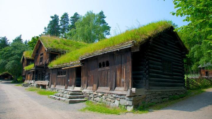 Norwegian-Museum-Of-Cultural-History-51869