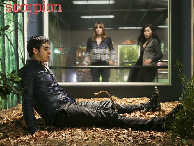 Nerd or Action Hero? So why did 2014's Scorpion stand out to me?